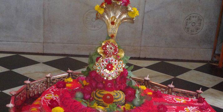 puja-for-kaal-sarp-dosh-shanti-on-maha-shivratri