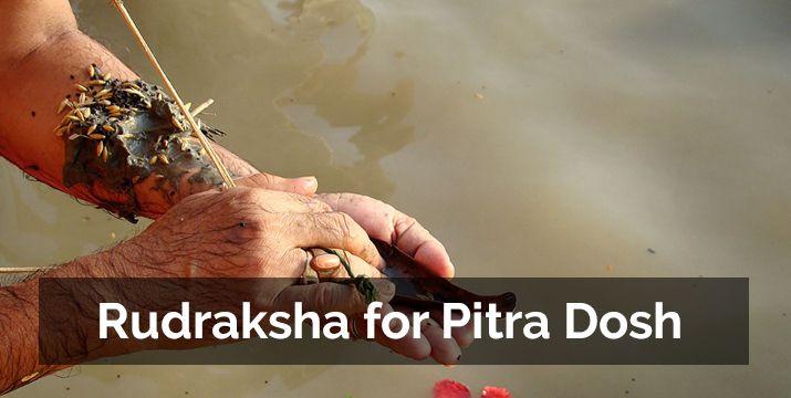 rudraksha-for-pitra-dosh-shanti